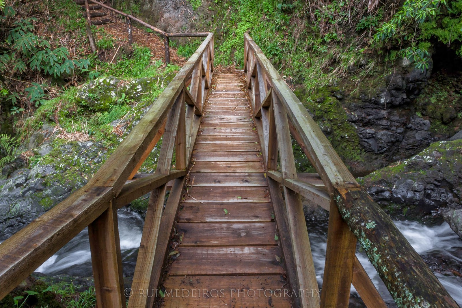 Bridge on the hiking trail